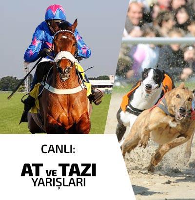 At ve Tazı Yarışları